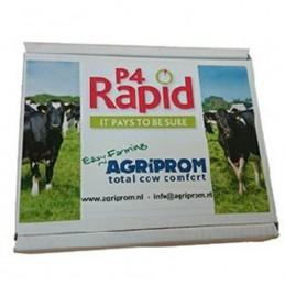 Progesteron P4 Rapid...