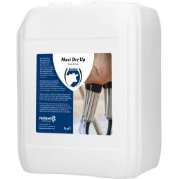 Maxi Dry Up 2.4 Liter