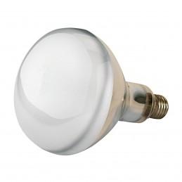 Kerbl warmtelamp 150 watt wit