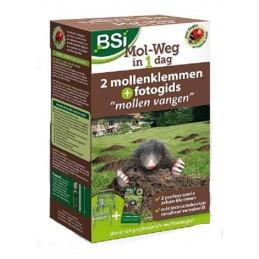 BSI Mol weg in 1 dag mollenklem