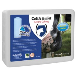 Cattle Bullet Droogstandbolus
