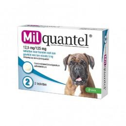 Milquantel wormtablet hond vanaf 5 kg 2 stuks