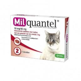 Milquantel wormtablet kat vanaf 2 kg 2 stuks