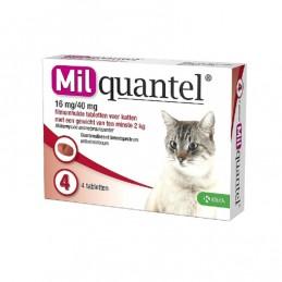 Milquantel wormtablet kat vanaf 2 kg 4 stuks