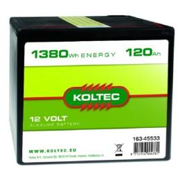 Batterij 12 Volt - 1380 Wh 120 Ah Alkaline