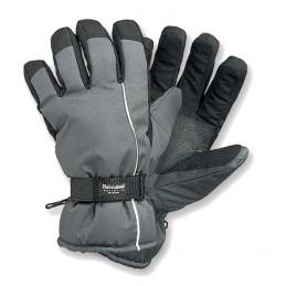 Skihandschoen grijs / zwart