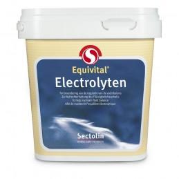 Equivital Electrolyten 1 kg
