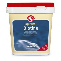 Biotin Equivital 1 kg