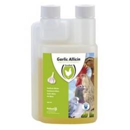 Garlic Allicin Vloeibaar 250 ml